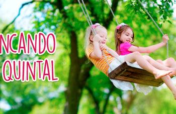 Playground no quintal